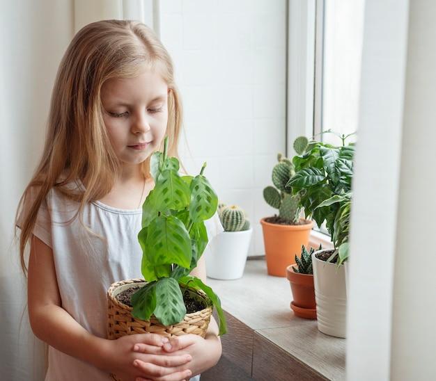 Soins des plantes d'intérieur, petite fille s'occupant des plantes d'intérieur