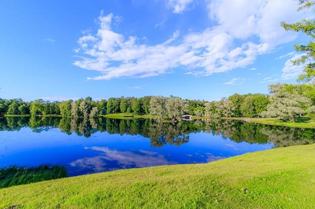 Soirée d'été dans le parc avec un lac. paysage d'été.