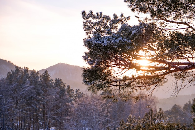 Soirée d'hiver paysage de haute montagne