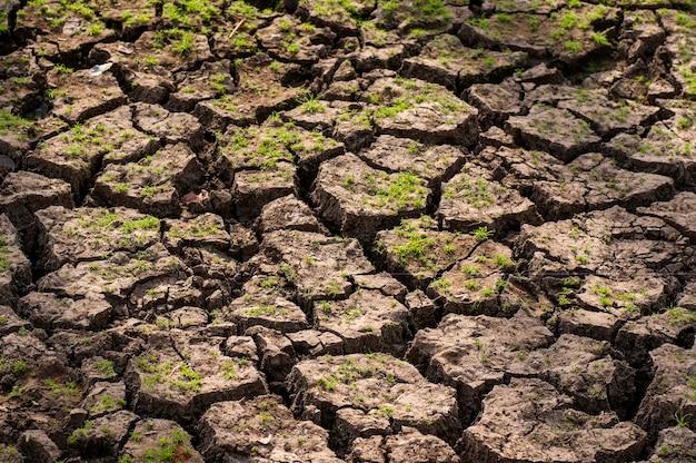 Sol fissuré au sol un gros plan de fissures sur le sol en raison de la sécheresse