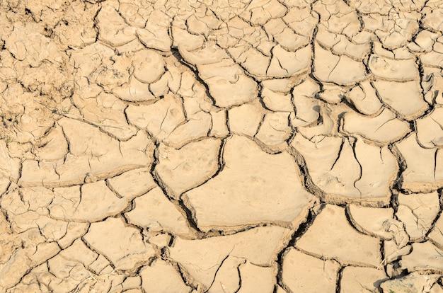 Sol de fissure sèche