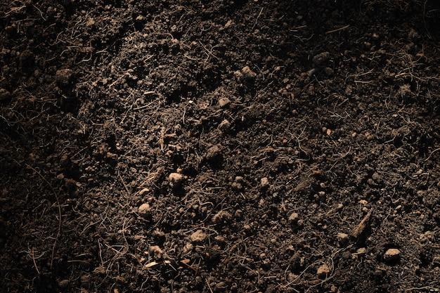 Sol limoneux fertile adapté à la plantation, fond de texture du sol.