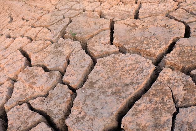 Sol séché et fissuré, sol aride de près