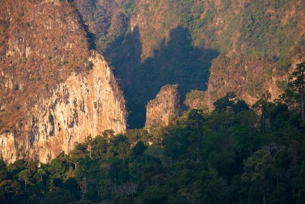 Le soleil brille à travers la forêt et les montagnes.