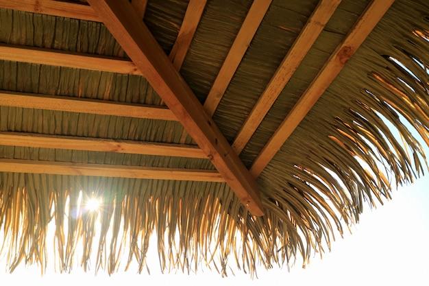 Soleil, briller, par, noix coco, paume, feuille, toit, pavillon, île paques, chili