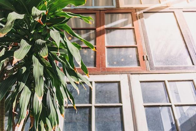 Le soleil d'été chaud fait briller une lumière chaude dans le concept de maison de la saison estivale