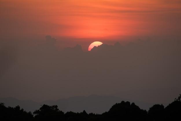 Le soleil se lève au-dessus du sommet de l'arbre.