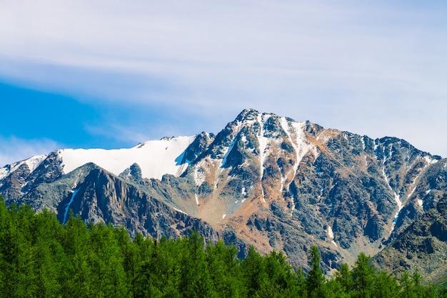 Sommet de la montagne enneigée derrière une colline boisée sous un ciel bleu clair.