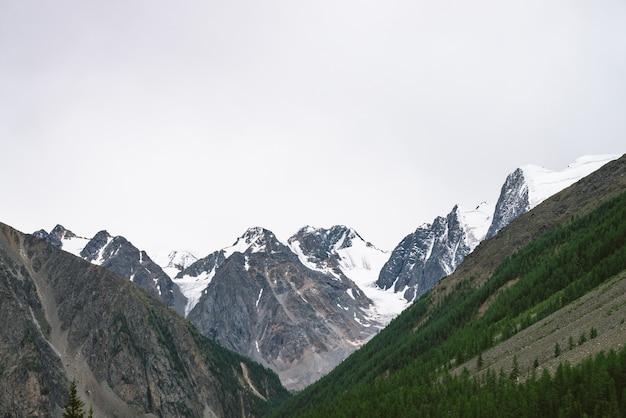 Sommet de la montagne enneigée derrière la colline avec la forêt sous le ciel nuageux. crête rocheuse par temps couvert. neige blanche sur glacier. paysage atmosphérique de nature majestueuse.
