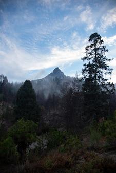 Sommet de la montagne sur la forêt nevado de colima, volcan au mexique