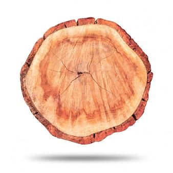 Souche de bois ou bûche de bois isolé sur blanc pur