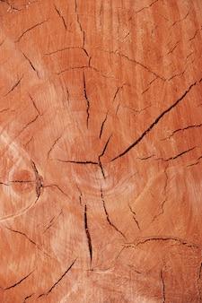 Souche, vieillissement du bois