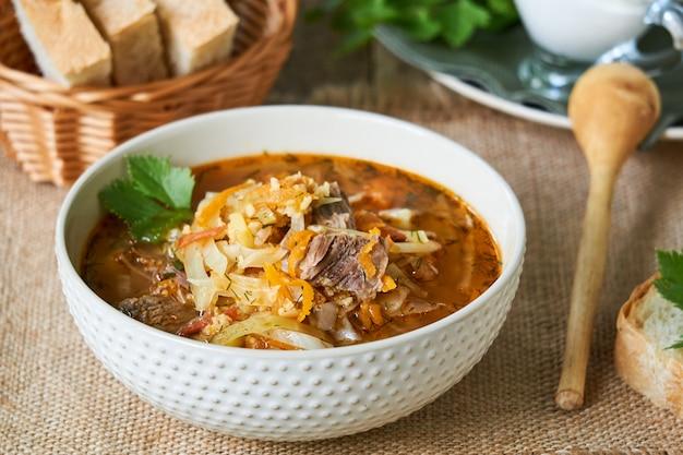 Soupe au chou russe traditionnelle avec de la viande dans un bol blanc