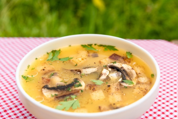 Soupe chaude aux champignons dans la nature.