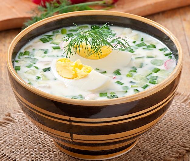 Soupe froide de kéfir de légumes aux œufs et aux légumes verts