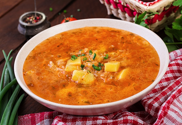 Soupe russe traditionnelle au chou - soupe de choucroute - shchi.