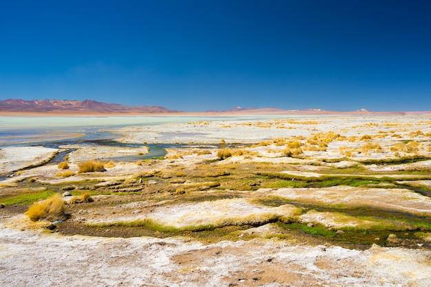 Source chaude colorée sur les andes, bolivie