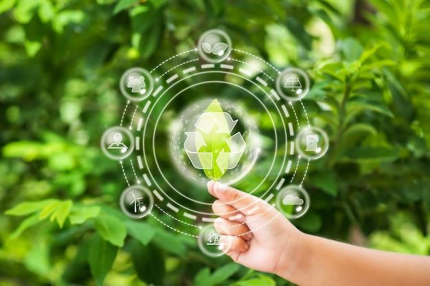 Sources d'énergie pour le développement durable renouvelable concept d'écologie et d'environnement
