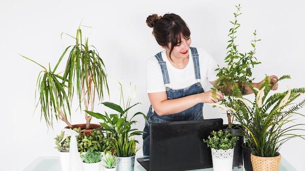 Souriant fleuriste femme examinant des plantes en pot avec ordinateur portable sur le bureau