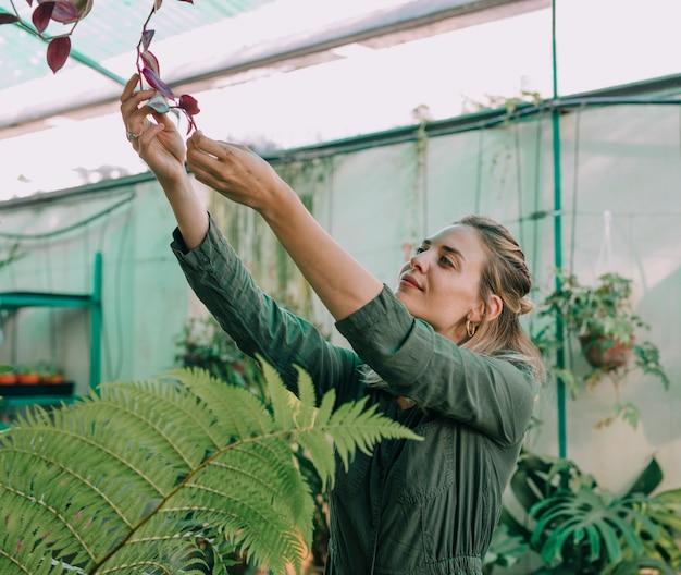 Souriante jeune femme regardant une plante dans la pépinière