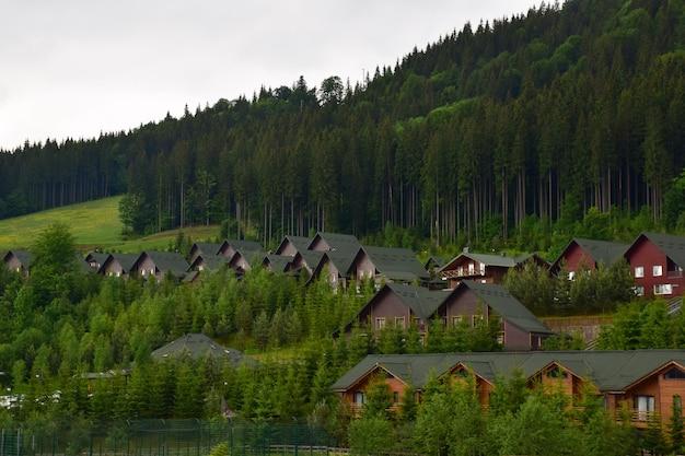 Sous la montagne d'été, il y a des rangées de maisons aux toits verts. les pentes sont envahies par les arbres