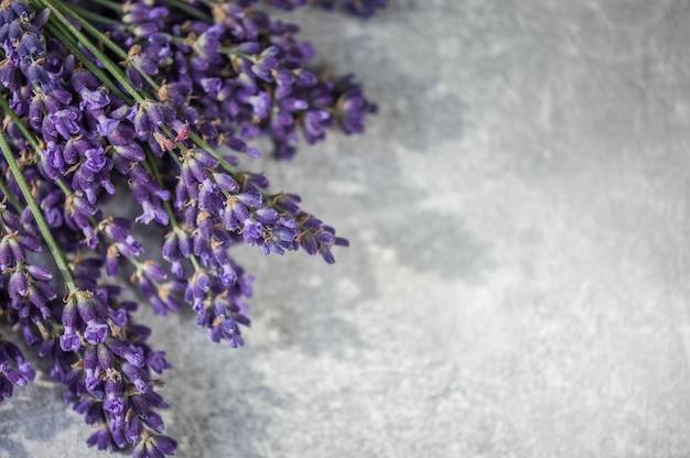 Spa à la lavande. fleurs de lavande sur gris clair. fond, vue de dessus. spa.
