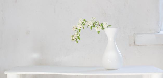 Spirée blanche dans un vase sur fond blanc