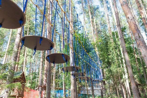 Le sport écologique dans les bois