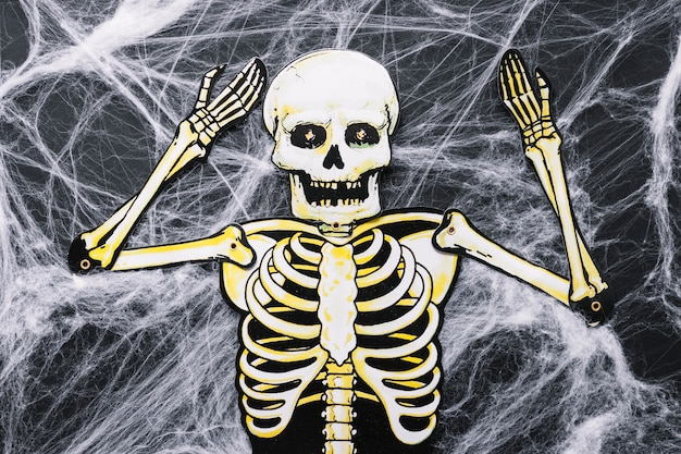 Squelette de papier sur toile artificielle