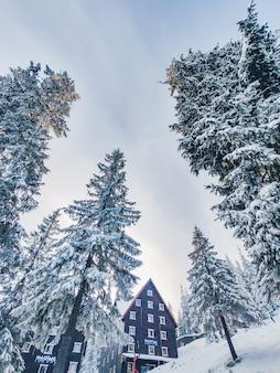 Station de ski des montagnes dans l'espace de copie des montagnes des carpates