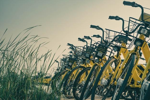 Stationnement des vélos sur le campus