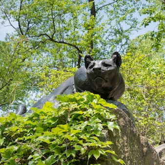 Statue d'animal à central park, manhattan, new york, état de new york, états-unis