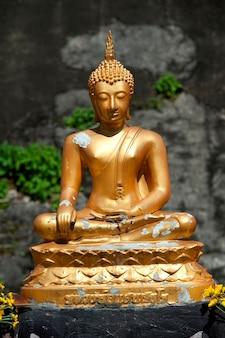 Statue de bouddha au wat chedi luang, chiang mai, thaïlande