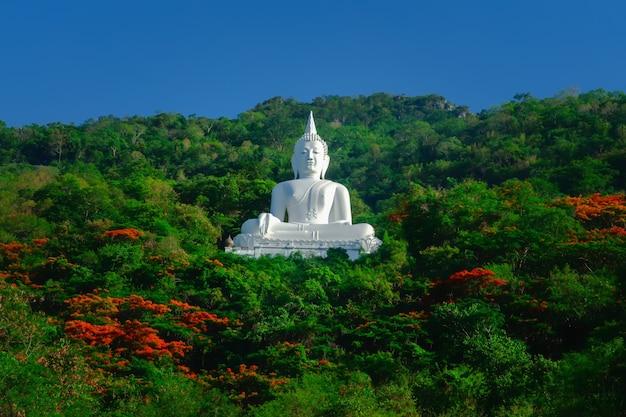 Statue de bouddha avec ciel bleu et forêt