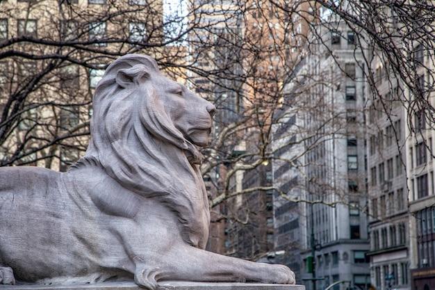 Statue de lion en pierre devant la bibliothèque publique de new york