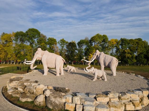 Statues de mammouth dans l'espace de copie du parc