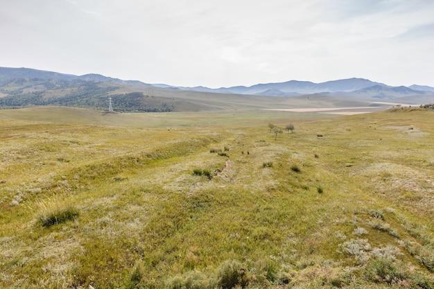 Steppe mongole sur fond de ciel nuageux, beau paysage. mongolie