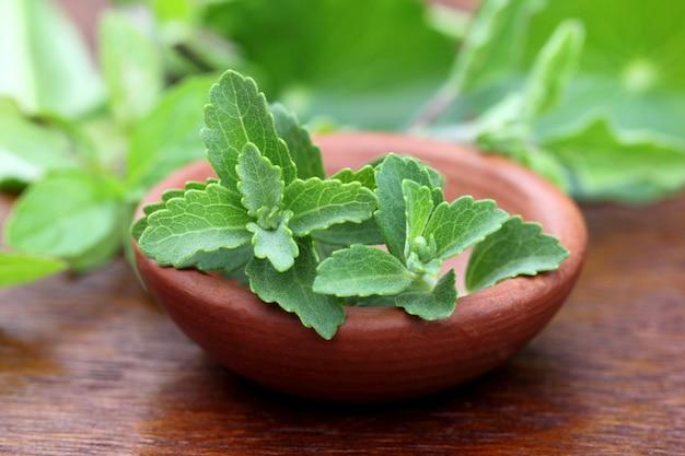 Stevia sur un bol marron sur une surface en bois