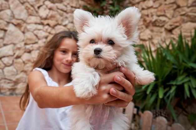 Stock photo d'une fille vêtue de blanc tenant dans ses mains un petit chien blanc sur une terrasse