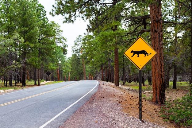 Streetsight au bord d'une route dans le parc national du grand canyon, usa