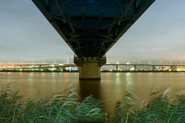 Structure du pont ferroviaire au-dessus des eaux de la rivière en mettant l'accent sur les roseaux de premier plan par nuit