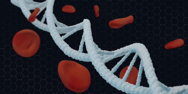 Structure de la vie en hélice d'adn et illustration 3d des globules rouges