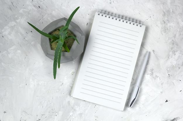 Succulente dans un pot en béton et un cahier ouvert avec une feuille vide