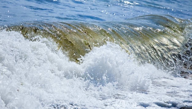 Super vague de surf sur la mer sur la côte