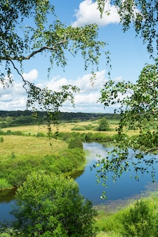 Superbe rivière qui coule dans les champs verdoyants de pushkinskiye gory, en russie.