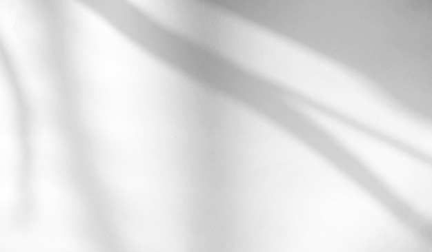 Superposition D'ombre Naturelle De Feuilles Tropicales Sur Fond De Texture Blanche, Pour Superposition Sur La Présentation Du Produit, Toile De Fond Et Maquette, Concept Saisonnier D'été Photo Premium