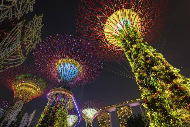 Supertrees à gardens by the bay. les structures en forme d'arbres sont ajustées