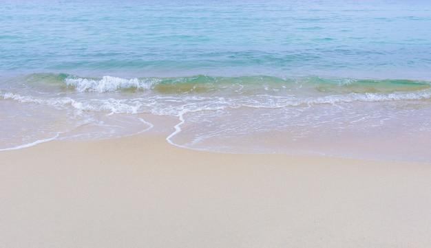 Surf en mer sur la plage