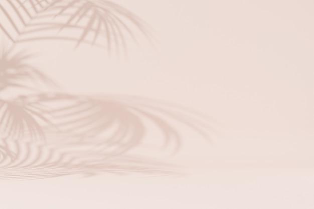 Surface beige des vacances d'été avec des ombres de feuilles tropicales