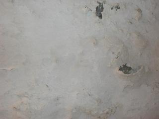 Surface de béton, de craquage